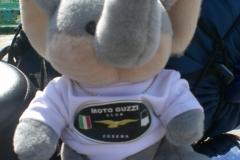 Motoabbuffata 200900002