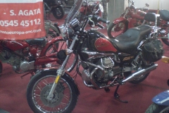 MR 2010 (180)